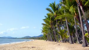 Australia Cairns, Palm Cove, by Meredith B